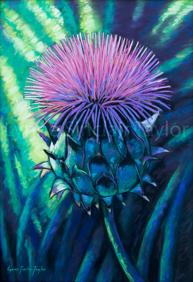 exotic-cardoon